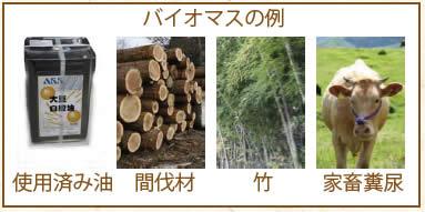 ex_biomass.jpg