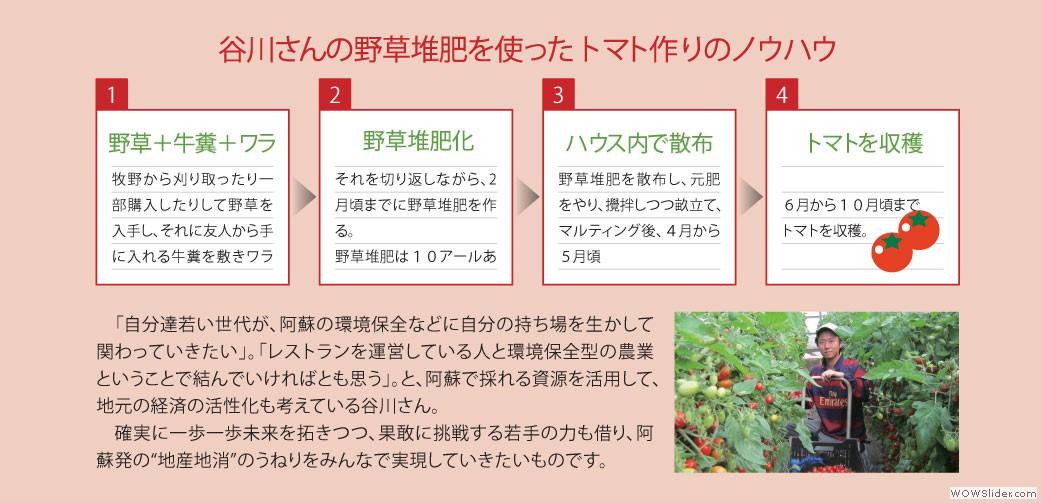 谷川さんの野草堆肥を使ったトマトづくりのノウハウ