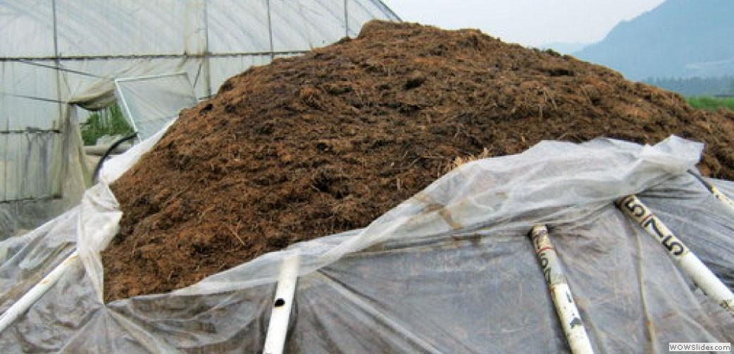 野草に牛糞を混ぜて作られ、こんもりとした野草堆肥。